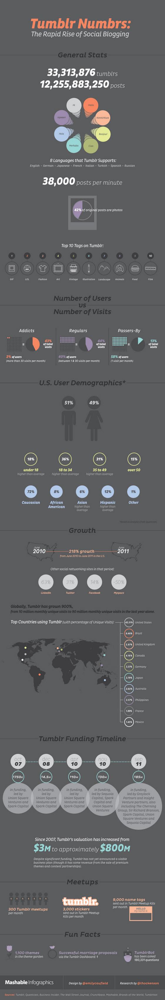 Tumblr Infographic