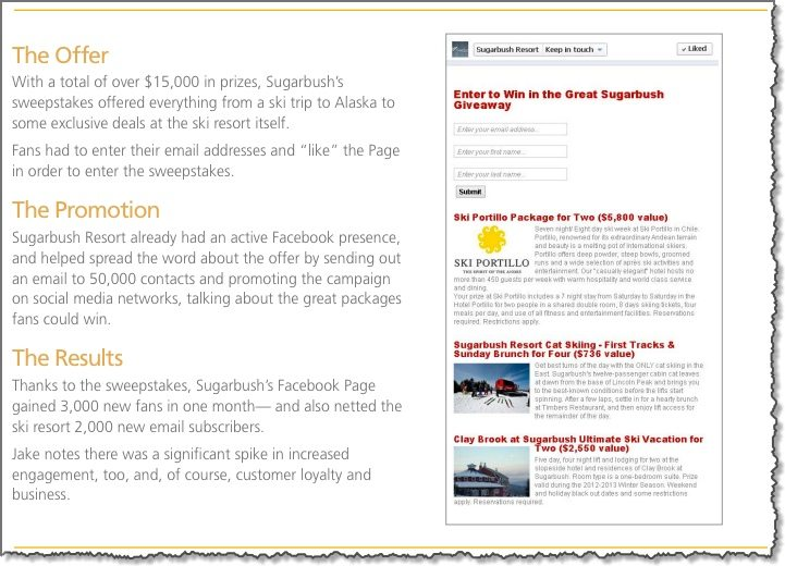 Successful Facebook Marketing Campaigns Case Study 5