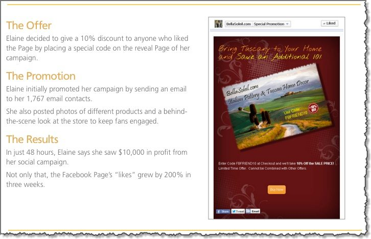 Successful Facebook Marketing campaigns for small business case study 2