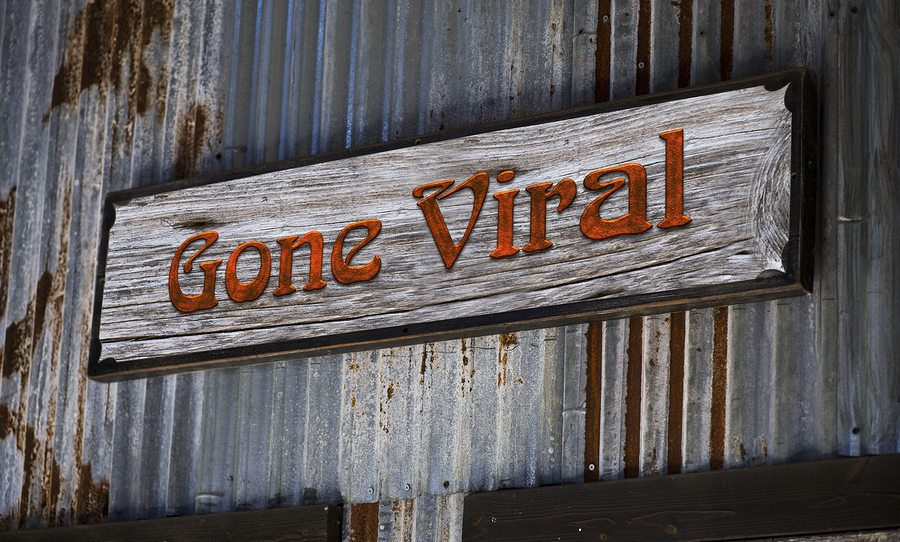 5 Clever Social Media Marketing Campaigns that Went Viral