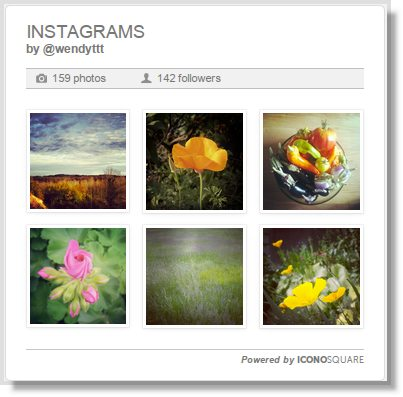 Wordpress Instagram plugin