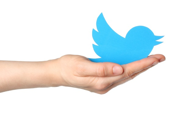 Top 5 Twitter Management Tips to Increase Your Followers Organically