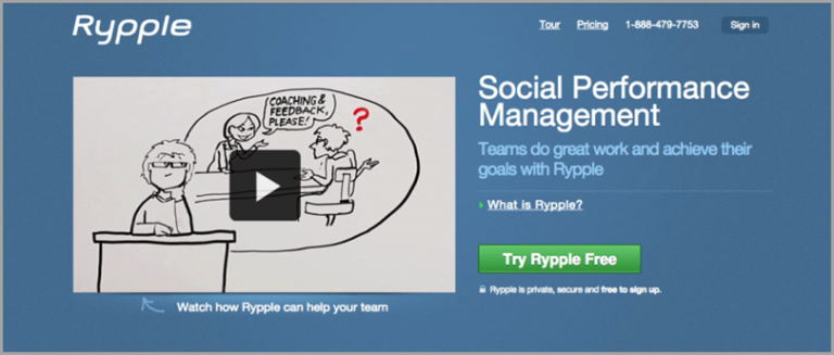 Rypple explainer video