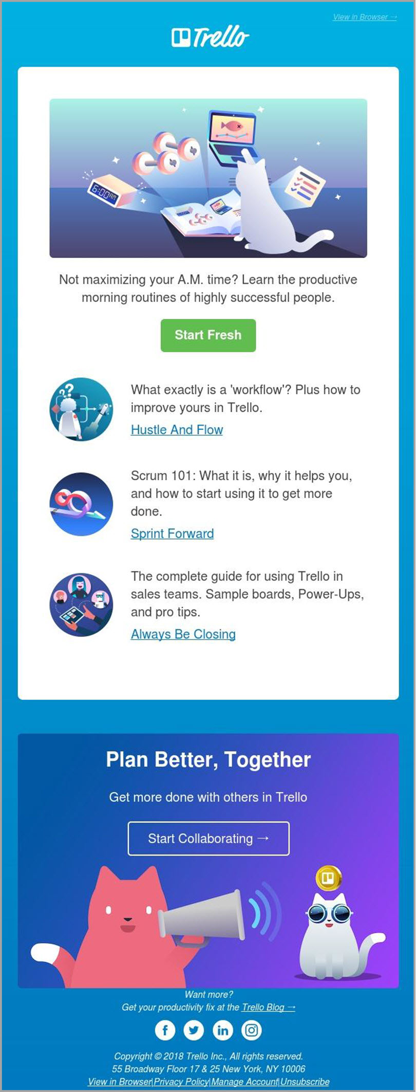 Figure Out the Need for trello for email newsletter