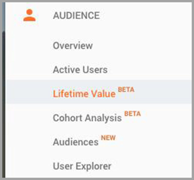 Lifetime Value for Audience for SEO metrics
