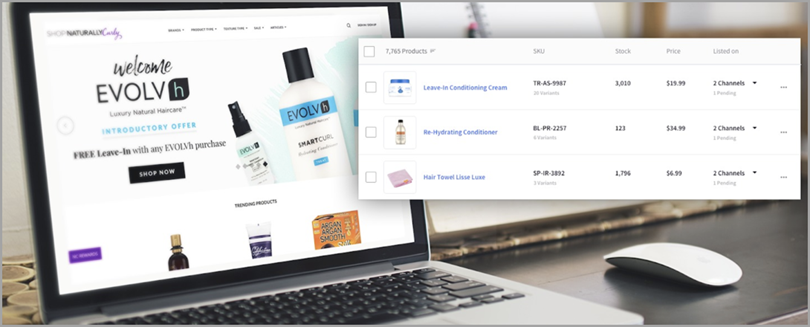 BigCommerce eCommerce Management for <a href=