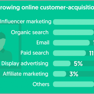 fastest growing online customer acquisition method for influencer marketing for solopreneurs