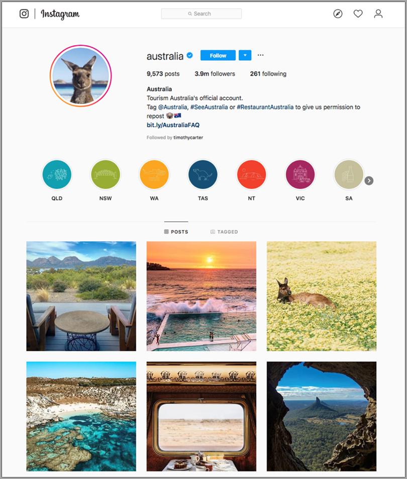 Instagram for digital marketing trends
