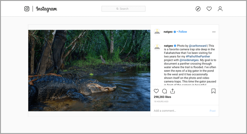 National Geography tells story about their work for Instagram content