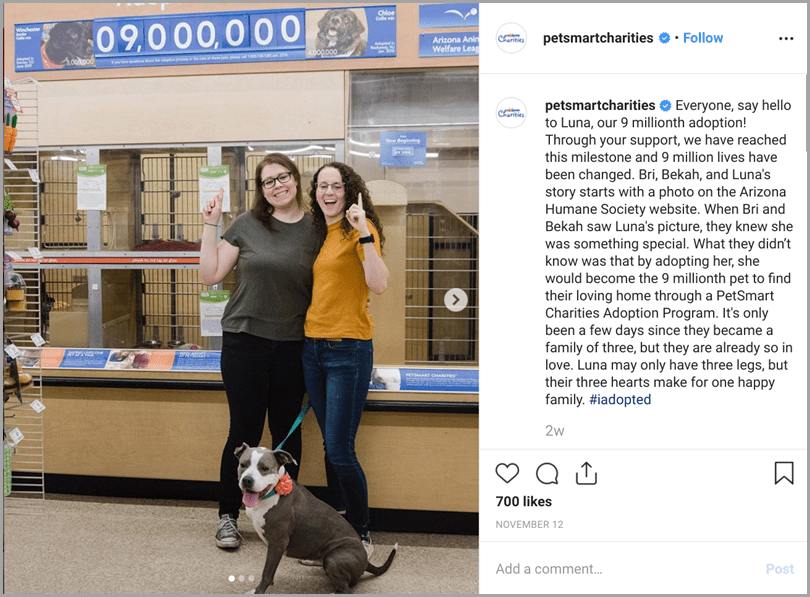 PetSmart Charities for Instagram content