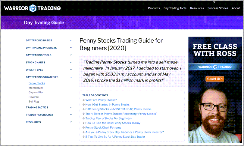 Warrior trading penny stocks trading guide for beginners 2020 reference guide