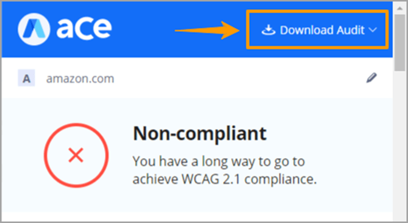 aCe-Download-Audit-Web-Accessibility-Lawsuits