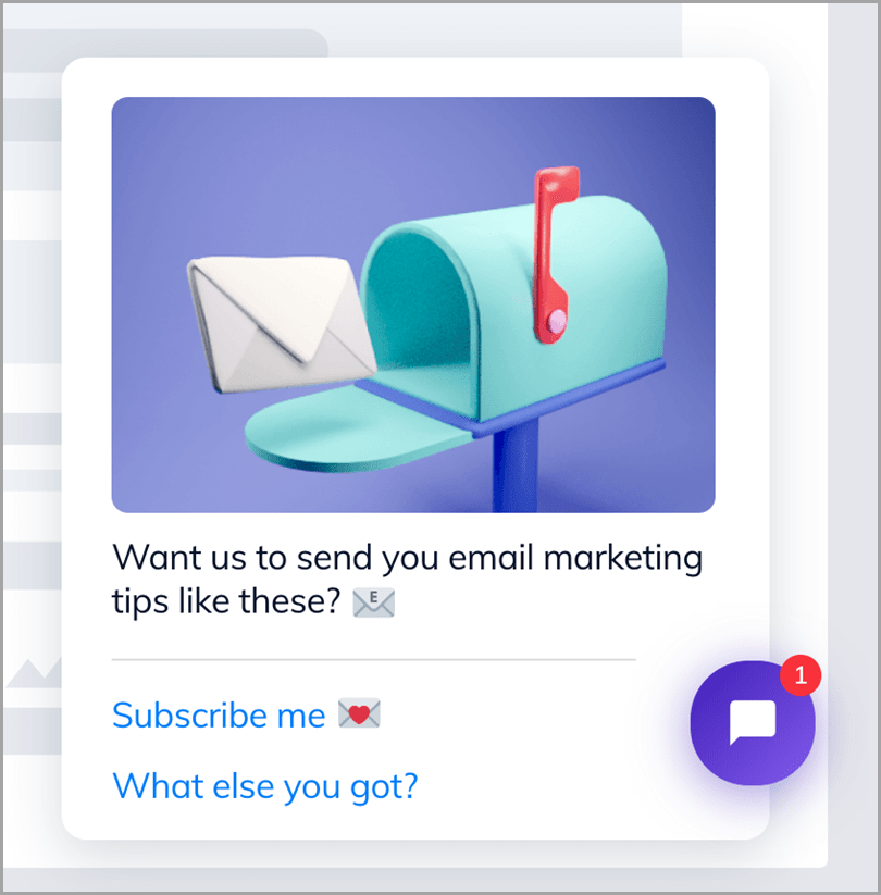 5-eCommerce-Email-Marketing-Tips-You-Need-to-Sell-in-2020-Newsletter-Preferences-with-Chatbots