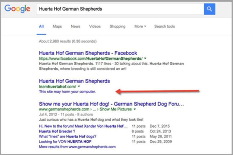 Google-Huerta-Hof-German-Shepherds